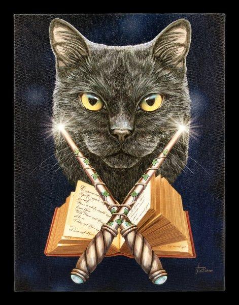 New Owl And Cat Canvas Plaque –25cm x 19cm– Lisa Parker /'purrfect Wisdom/'