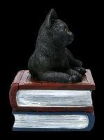 Box - Cat Figurine on Magic Books