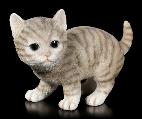 Baby Cat Figurine - American Shorthair playing