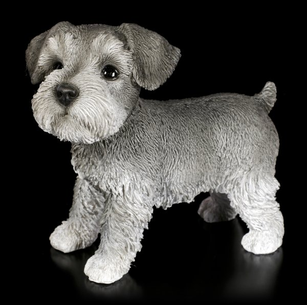 Hunde Figur - Schnauzer Welpe