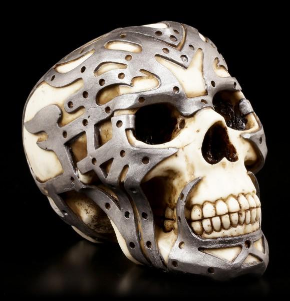Skull with Exoskeleton