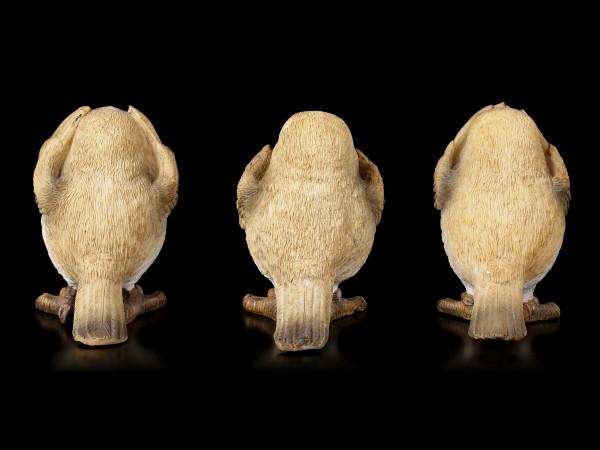 Three wise Robin Figurines - No Evil