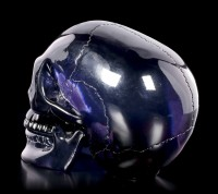 Dark blue Skull with moveable Jaw