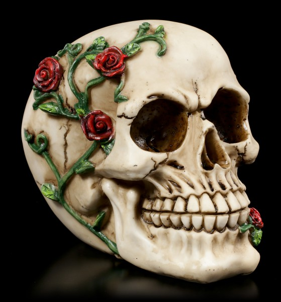 Skull - Rose From Beyond