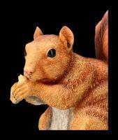 Eichhörnchen Figur beim Fressen