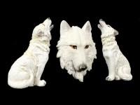 Kühlschrank Magnete - Weiße Wölfe
