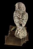 Box - Owl Sitting On Books