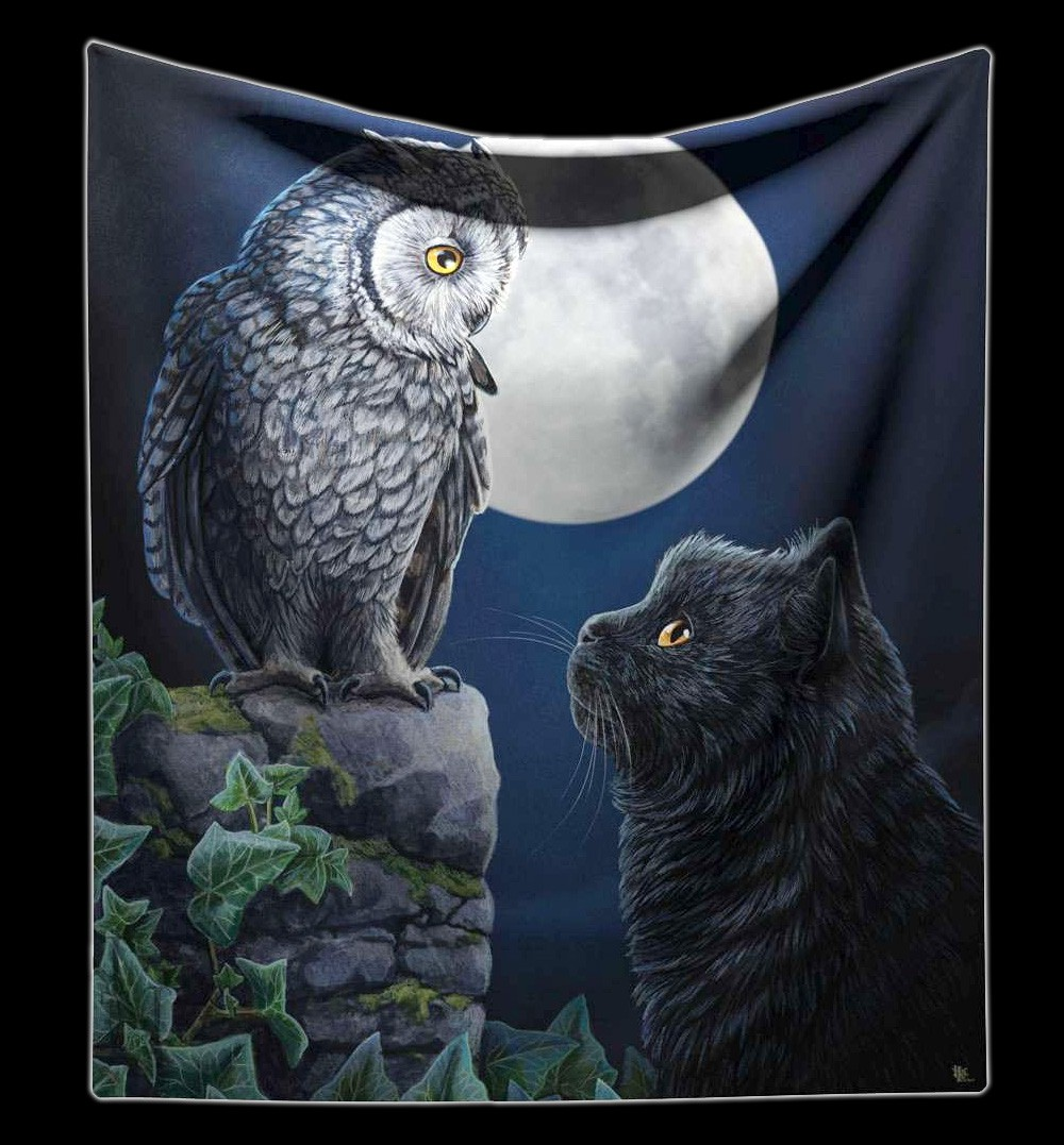 Fluffy Blanket Cat & Owl - Purrfect Wisdom by Lisa Parker