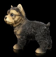 Hunde Figur - Yorkshire Terrier Welpe stehend