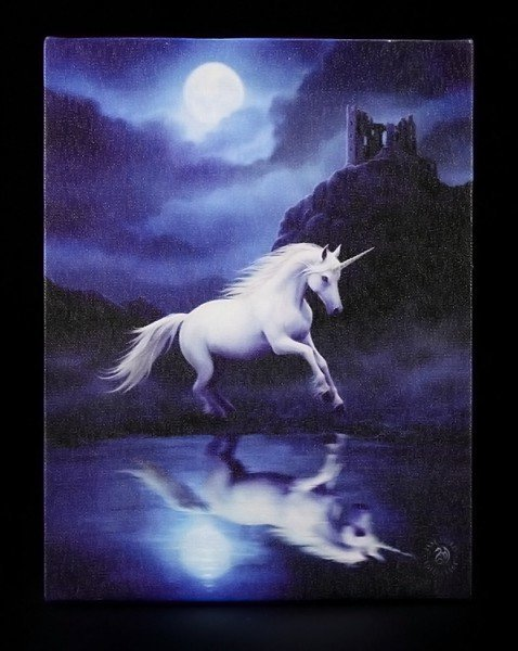 Small Canvas - Moonlight Unicorn by Anne Stokes