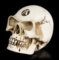 Alchemy Skull Gear Knob - Alchemist Bone