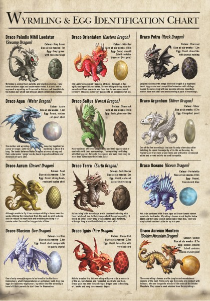 Greeting Card - Age Of Dragons - Wyrmling & Egg Identification Chart