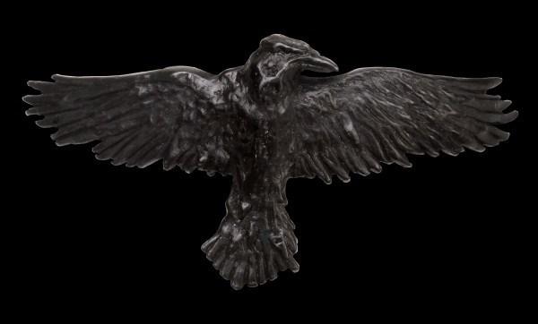Alchemy Hair Clip - Raven