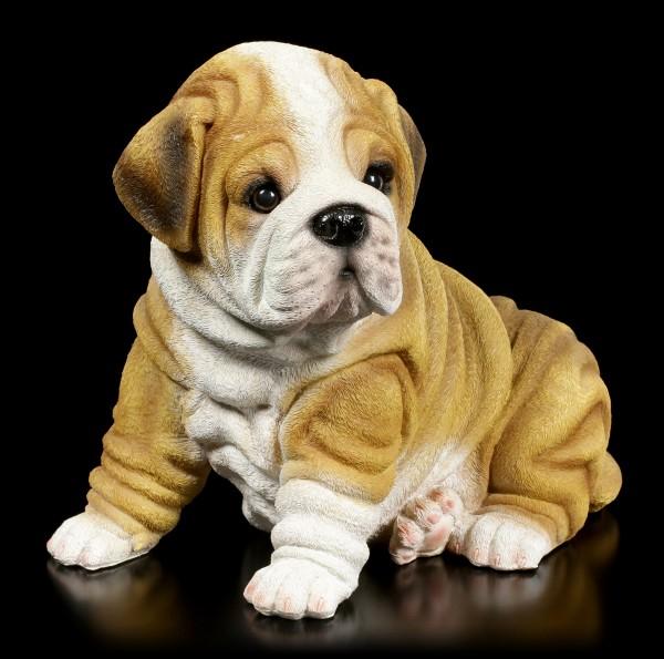 Garden Figurine - Shar Pei Puppy