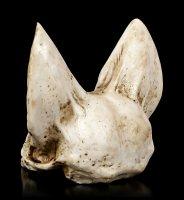 Bat Skull - Vespertilio