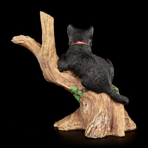 Witches Cat - Onyx on Tree