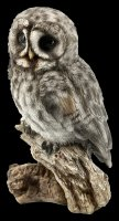 Great Gray Owl Figurine on Perch - small