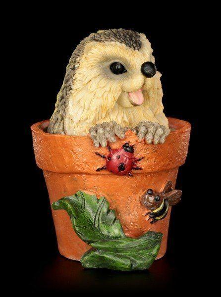 Lustige Igel Figur im Blumentopf - Kuckuck