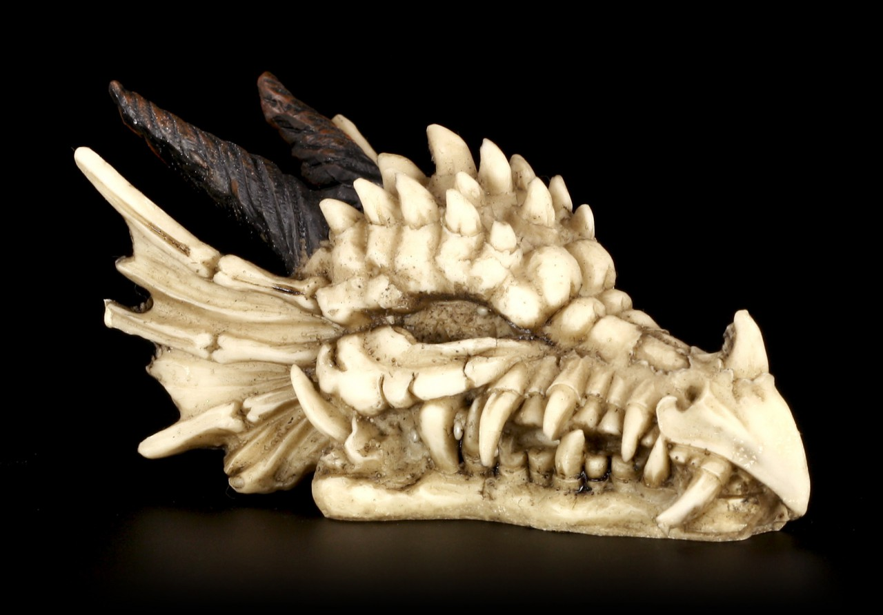 Totenkopf - Drachenschädel mit Hörnern