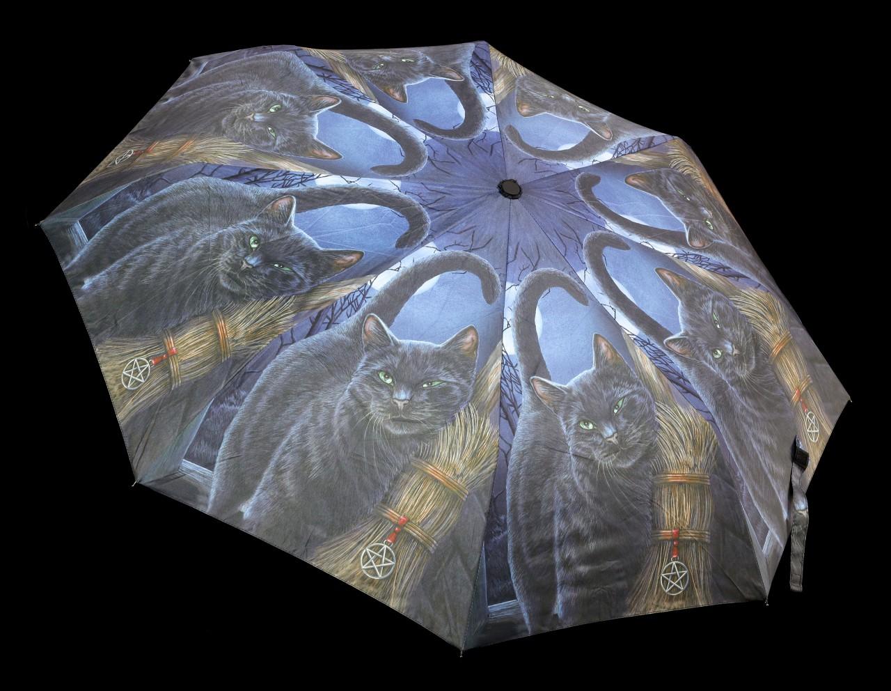Regenschirm mit Katze - A Brush with Magic