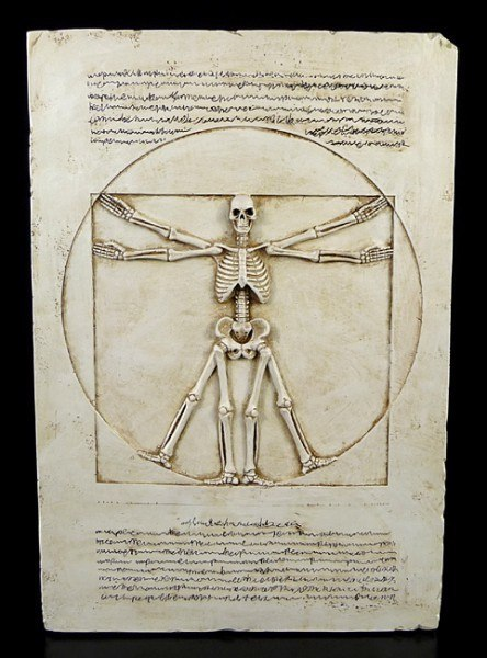 Vitruvian Skeleton Plaque