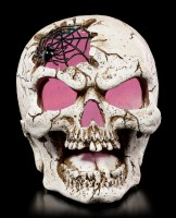 Skull with LED - Willy with Spiderweb