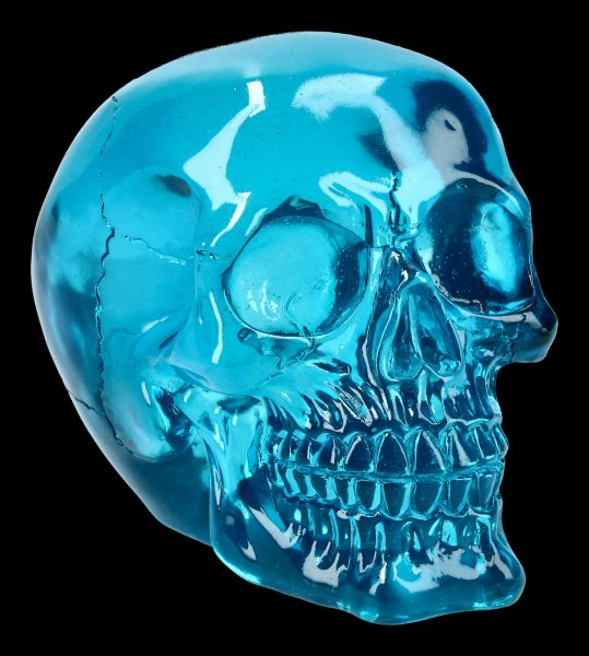 Skull - translucent blue