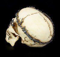 Totenkopf mit Stacheldraht