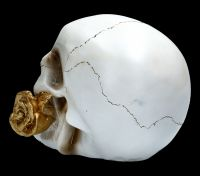 Weißer Totenkopf mit Rose - Floral Fate