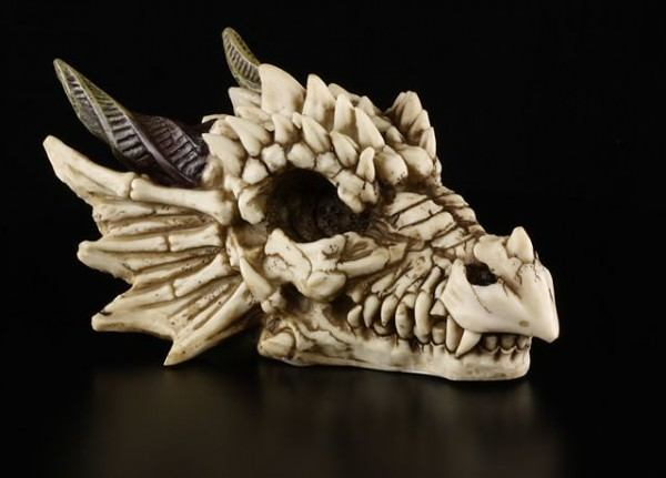 DragonSkull - Dragon Skeleton