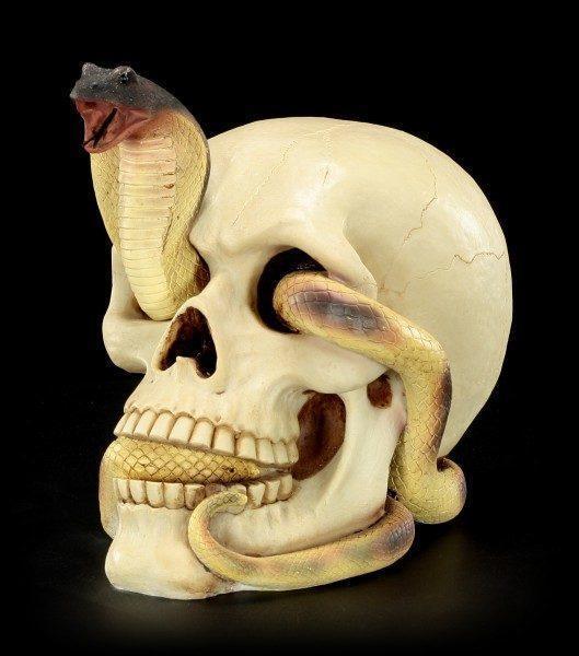 Totenkopf - Kobra schlängelt sich durchs Auge