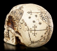 Skull with Fantasy Decorations