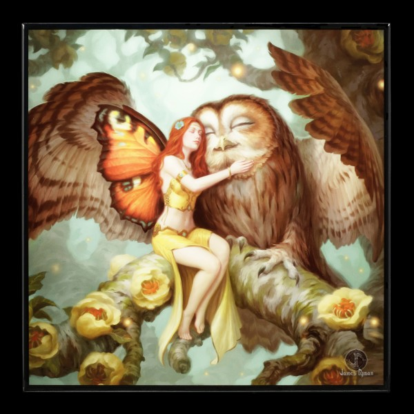 Small Crystal Clear Picture - Fairy and Owl