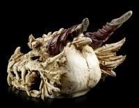 Riesen-Drachenschädel