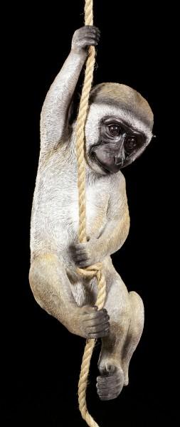 Garden Figurine - Vervet Monkey hanging on Rope