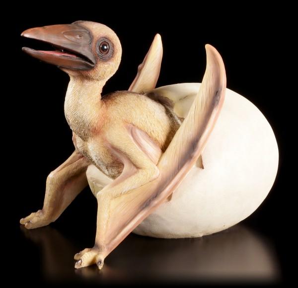 Gartenfigur Dinosaurier - Pterosaurier schlüpft