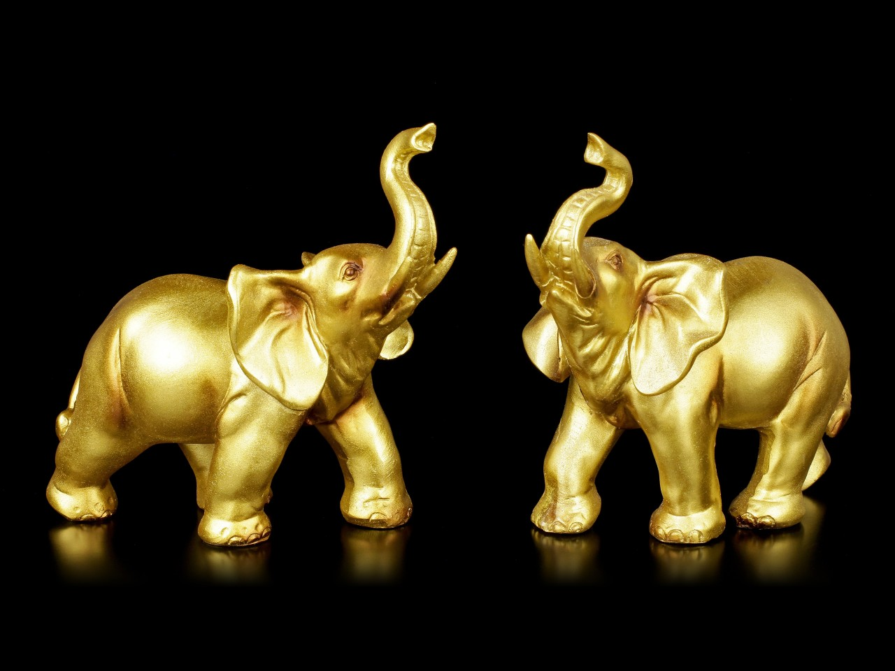Elephant Set of 2 - gold colored
