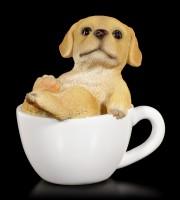 Dog in Cup mini - Labrador Puppy
