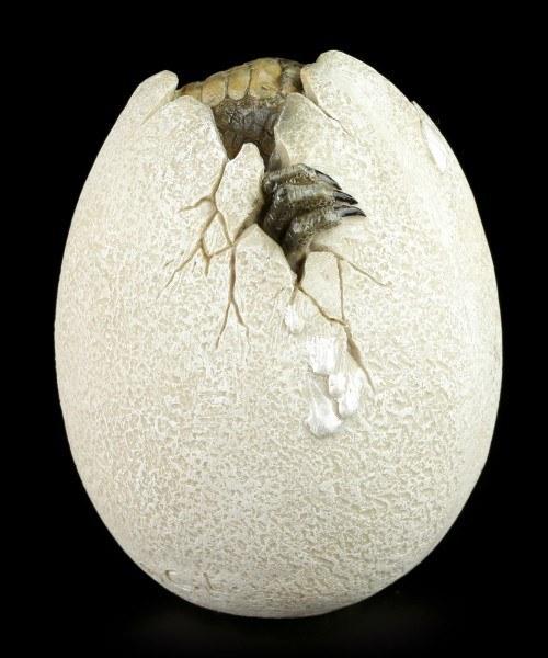 Dinosaur Egg - Hatching