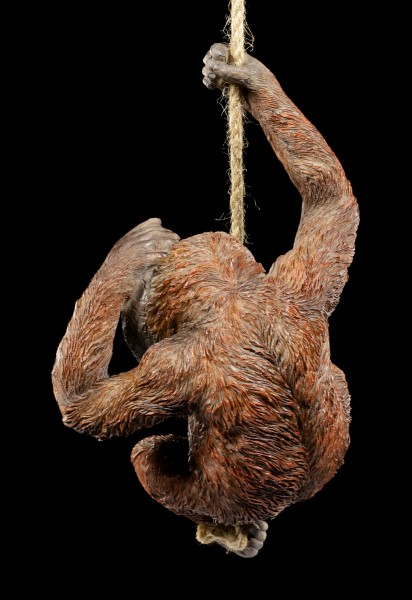 Orang-Utan Figur am Seil hängend - Cheeky Chap