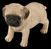 Hunde Figur - Mops Welpe