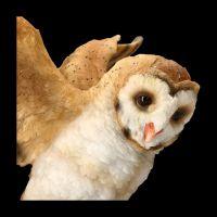 Garden Figurine Owl with spreaded Wings