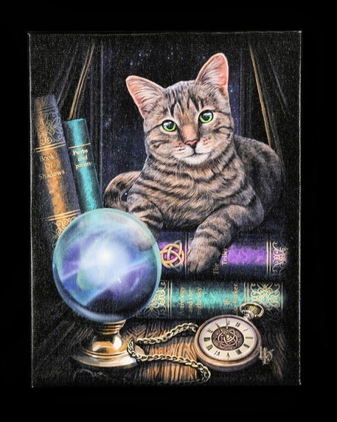 Small Canvas - Fortune Teller by Lisa Parker