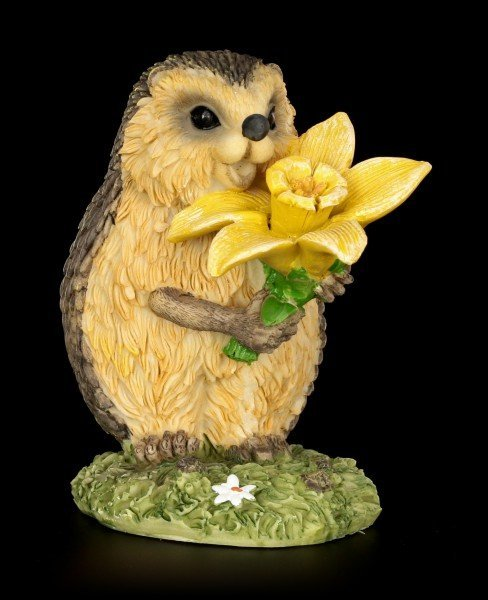 Funny Hedgehog Figurine with Daffodil - Congratulations