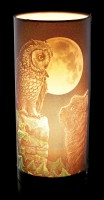 Table Lamp wit Cat & Owl - Purrfect Wisdom