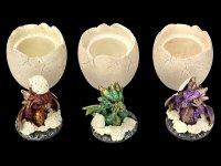 Drachen Schatullen Set - Nichts Böses