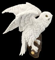 Wall Plaque - Snow Owl sitting on Perch