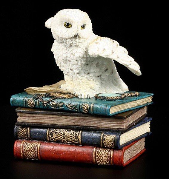 Magic Box - Owl with Books