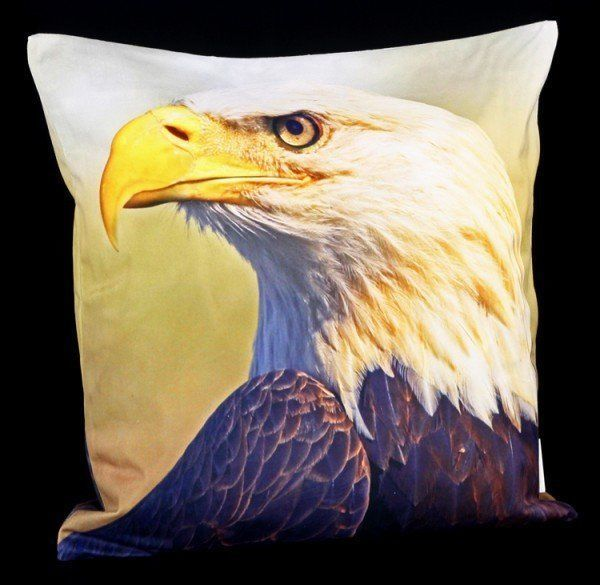 Cushion Cover - Bald Eagle