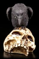 Raben Figur auf Totenschädel